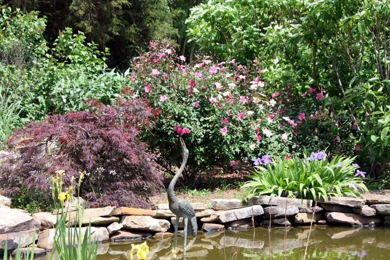 Huntsville Botanical Garden Pond