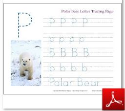 Polar Bear Tracing Page