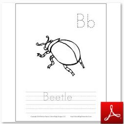 Beetle Coloring Tracing Page