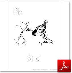 Bird Coloring Tracing Page