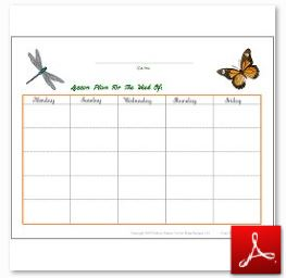 Bugs and Butterflies Simple Lesson Plan