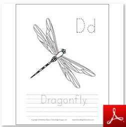 Dragonfly Coloring Tracing Page