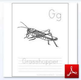 Grasshopper Coloring Tracing Page