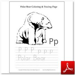 Polar Bear Coloring Tracing Page