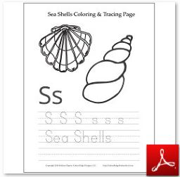 Sea Shell Coloring Tracing Page