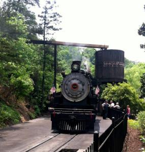 Dollywood Express