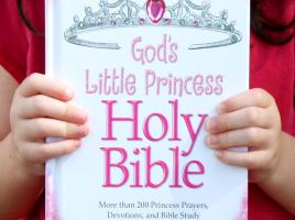 Gods Little Princess Bible Sheila Walsh