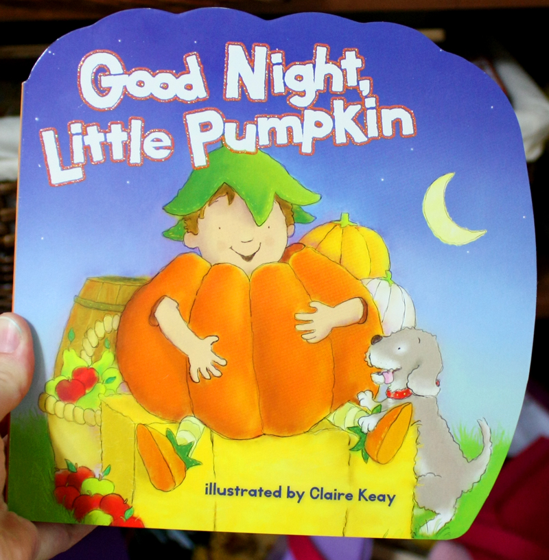 Good Night Little Pumpkin Book Cover