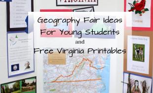 Virginia Geography Fair Display Board Button