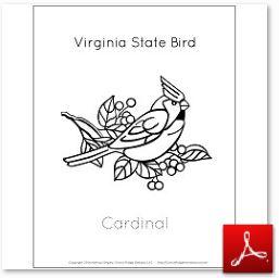 Virginia State Bird Cardinal