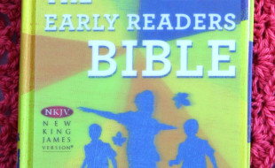 Tommy Nelson Early Readers Bible Cover
