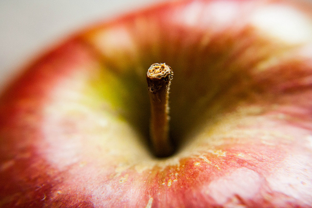 Apple by Catrin Austin on flickr