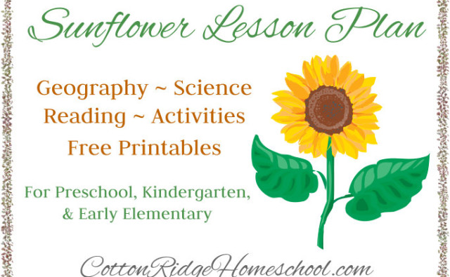 Sunflower Lesson Plan CRH Feature Button