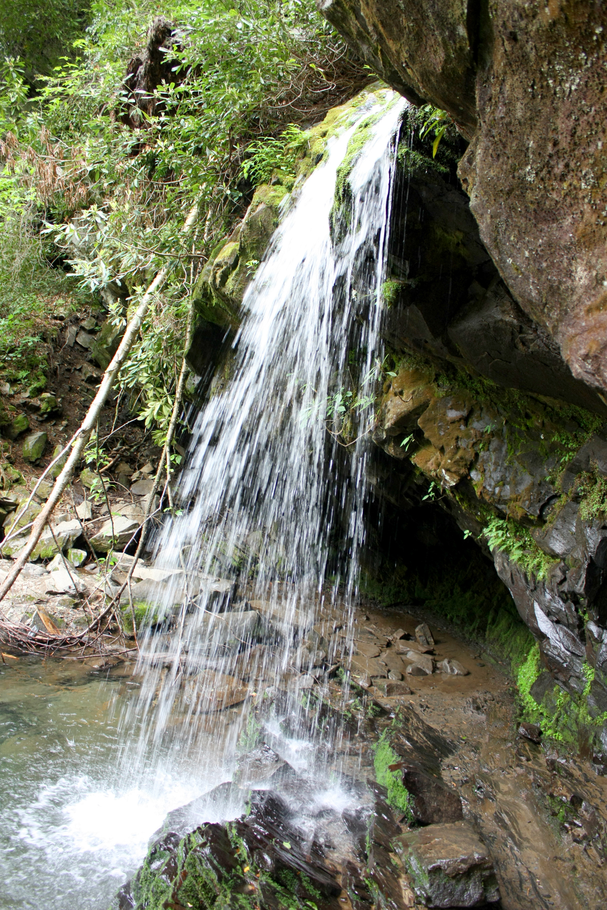 Trillium Gap Trail Waterfall 4