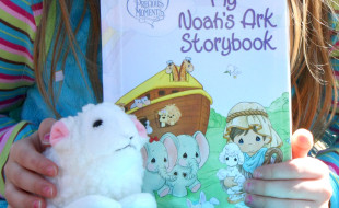 My Noahs Ark Storybook Cover