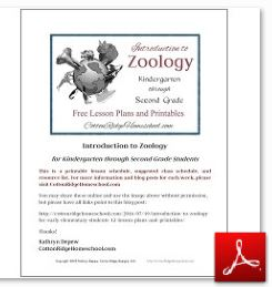 Introduction to Zoology blog post printable