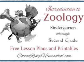 Zoology Button CRH Feature