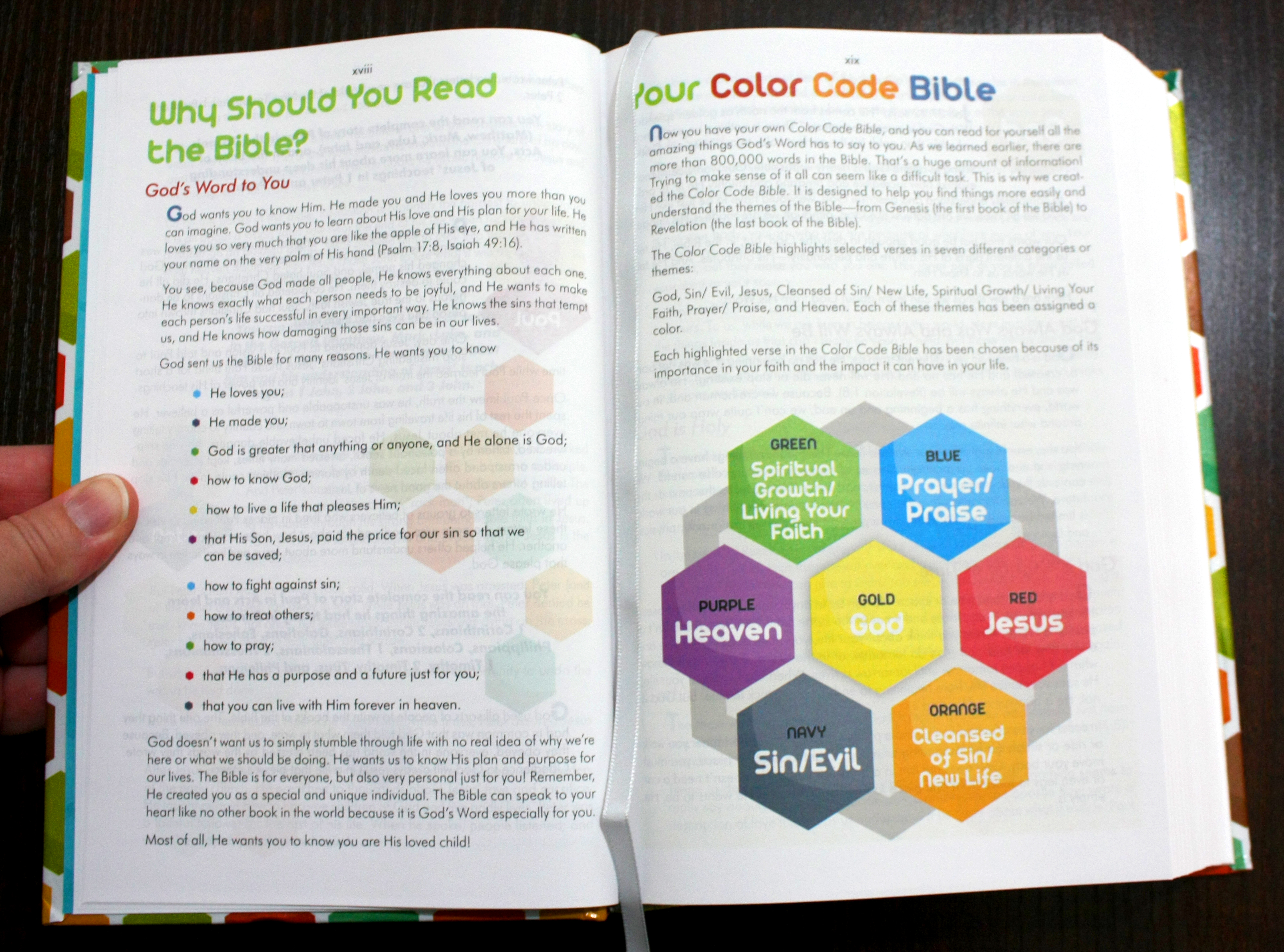 The Color Code Bible For Kids ~ Book Review